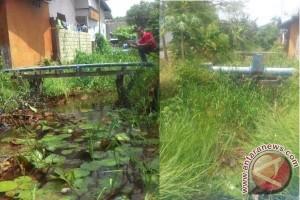 Sungai Ulis dan Usang Kuala Kapuas Penuh Sampah dan Semak Belukar, Mengapa?