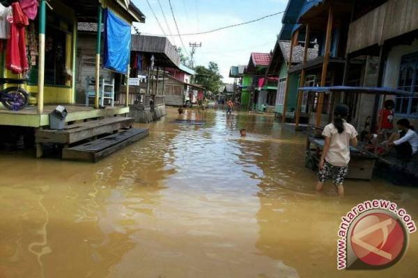 Sungai Barito Meluap, Sejumlah Desa Terendam Banjir