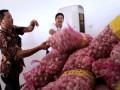 Pegawan Bulog Divre Kalteng saat meninjau gudang penyimpanan bawang putih di kantor bulog setempat di Palangka Raya, Jumat (09/06/2017).  Sebanyak 10 ton bawang putih telah tiba di Kalimantan Tengah dan siap didistribusikan guna mengantisipasi kelangkaan dan melonjaknya harga selama Ramadhan 1438/2017 di Kalimantan Tengah.Foto Antara Kalteng/Rendhik Andika.
