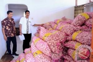 10 Ton Bawang Putih Tiba di Kalteng