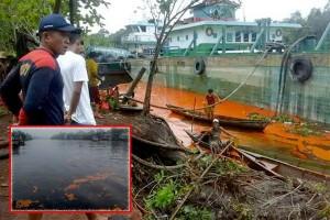 Cabut Izin PBS Lakukan Pencemaran Sungai Cempaka Mulia