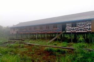 Keren! Desa Pedalaman Barito Utara Bangun Rumah Dayak 'Betang'