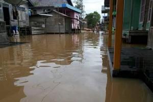 Banjir di Barito Utara Capai 60 Centimeter