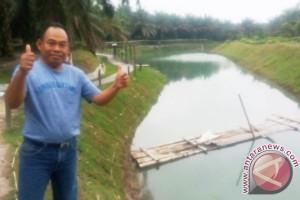 Artikel - Berawal dari Integrasi Sawit-Sapi Muncul Agrowisata di Kobar