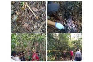 Ditemukan Kerangka Manusia di Hutan Desa Pembuang Hulu, Ini Respon Polres