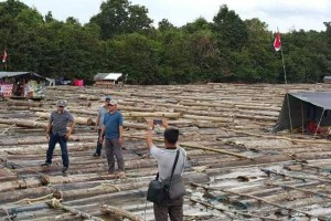 Polda Kalteng Amankan 7.500 Batang Kayu Log di DAS Barito
