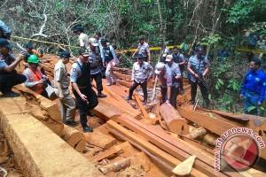 "Polisi Berhasil ""Bongkar"" Lokasi Illegal Logging di Seruyan Hulu"