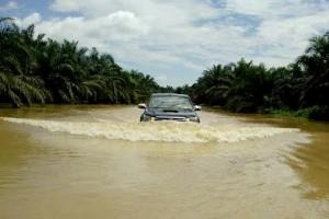Lagi! Banjir Kembali Rendam Pedalaman Kotawaringin Timur