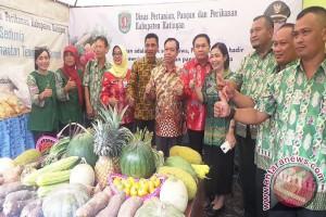 Kalteng Tingkatkan Pertanian Dukung Kedaulatan Pangan Nasional