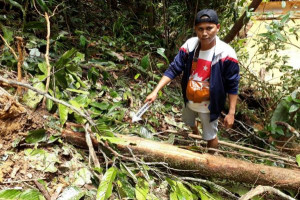 Kantong Kemih Tertusuk Patahan Kayu, Seorang Karyawan EPI Tewas