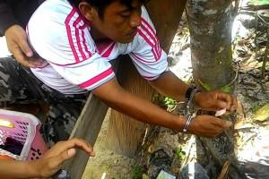 Seorang Pria Diduga Bandar Narkoba Ditangkap Polisi
