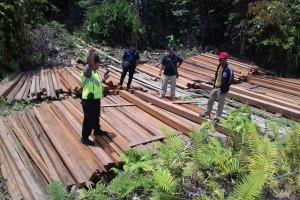 Polisi Barito Utara Amankan Kayu Olahan Ilegal