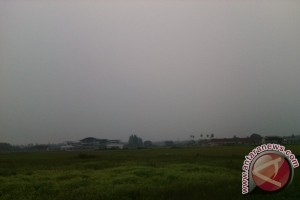 Transportasi Udara Natuna Lumpuh karena Kabut Asap