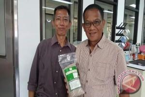 BPPT Jalin Kerjasama Penerapan Teknologi Sagu Lingga