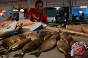 Disperindag: Kenaikan Harga Ikan Dingkis Hanya Musiman
