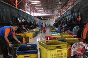 Ratusan Warga Tanjungbatu Resah Terancam Kehilangan Pekerjaan
