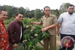 Ketum DPN HKTI Kagumi Potensi Pertanian Lingga