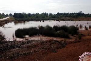 Dana Jaminan Pascatambang Rp157 Miliar Belum Dimanfaatkan