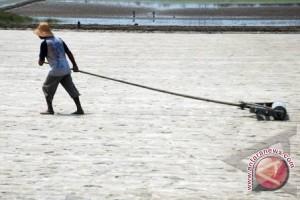 Indonesia sejak 1990 sudah impor garam