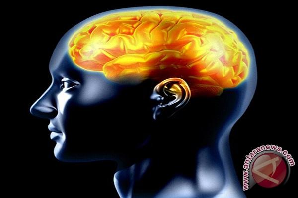 Epilepsi Bisa Hilang ?