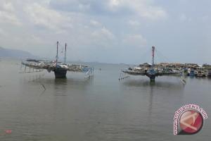 Produksi banyak, harga teri Lampung turun