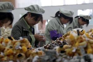 China ancam hukum berita yang promosikan gaya hidup barat