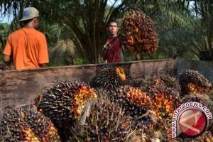 Australia dan Portugal  minati sektor pertanian di Lampung