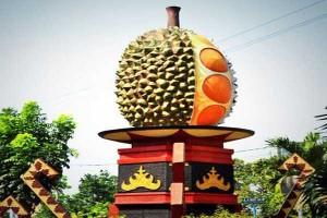 """Menikmati """"Rajanya Buah"""" di Kampung Durian Bandarlampung"""