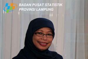 Jumlah Penumpang Transportasi di Lampung Turun