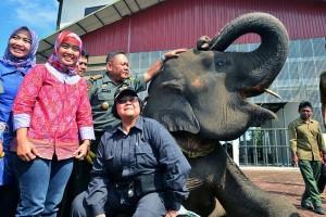 Menteri LHK Dukung Pengembangan Sarana TN Way Kambas