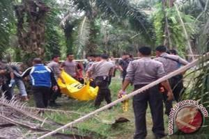 Seorang warga Mesuji tewas ditembak