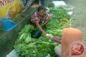 Bosan daging, warga buru ikan dan sayuran