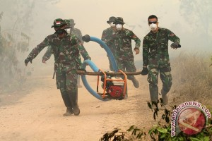 TNI tindak keras para pembakar hutan