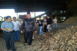 Bupati Lampung Tengah Sidak Pabrik Pengolah Singkong