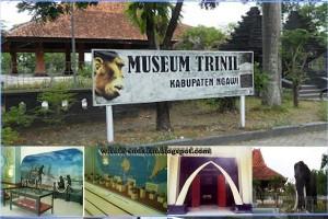 Mempelajari kehidupan manusia purba di Museum Trinil