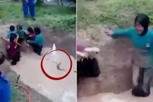 Siswi dipaksa masuk kolam ular, pengguna internet marah