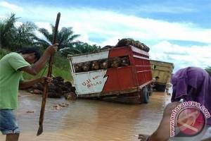 Jalan Tergenang Transportasi Tiga Desa Mesuji Terganggu