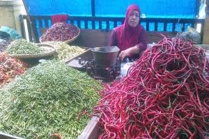 Harga Cabai Rawit di Lampung Bertahan Tinggi