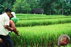 Kementan Siapkan Program Regenerasi Petani
