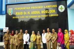 """Kadinkes: Fasilitas """"Ponek"""" RSUDAM Terlengkap di Lampung"""