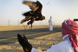 Warga Pakistan serang keluarga Kerajaan Qatar yang sedang berburu burung langka