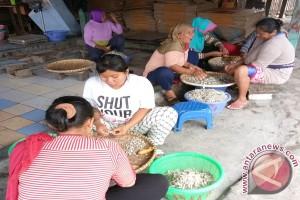 Produksi meningkat, harga teri Pulau Pasaran turun