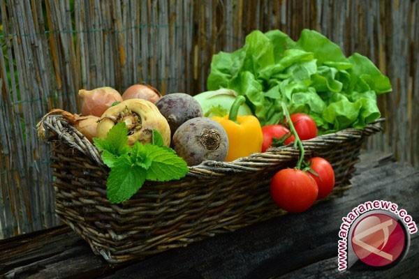 Ahli Gizi: Sayuran Cegah Kelainan Bawaan Bayi