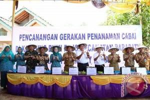 Waykanan, Kabupaten Pertama Laksanakan Gertam Cabai
