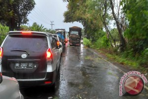 Arus Kendaraan Di Jalintim Tulangbawang Macet