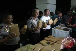 Polda Lampung sita 134 kg ganja asal Medan