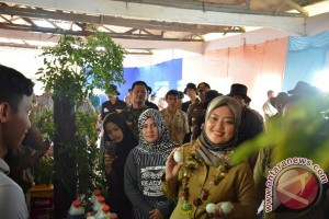 Bupati Lampung Timur Enggan Berkomentar Pilgub