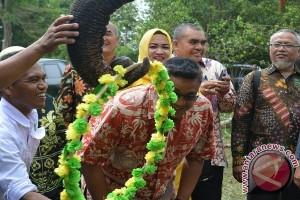 Gajah TNWK Kalungkan Bunga Ke Anggota DPR RI