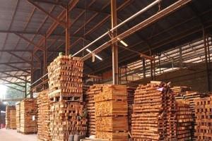 Produk Kayu Ringan Indonesia Diminati Pasar Eropa