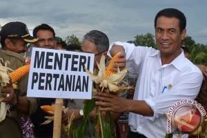 Mentan: Malaysia Mulai Impor Jagung Indonesia